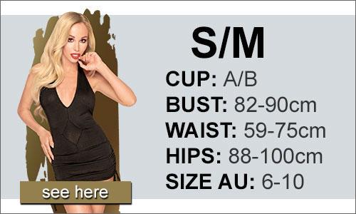 Penthouse Lingerie Size (S/M)